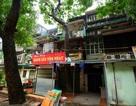 """Kỳ lạ lối kiến trúc """"cây mọc xuyên nhà"""" ở khu tập thể cũ Hà Nội"""