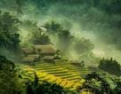Vẻ đẹp đất và người qua liên hoan ảnh nghệ thuật khu vực miền núi phía Bắc