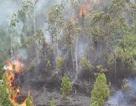 Đà Nẵng huy động hơn 100 bộ đội, dân quân dập đám cháy rừng