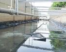 Công nghệ Nhật Bản giúp giảm đáng kể lớp bùn trên sông Tô Lịch