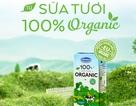 Những lợi ích không ngờ từ sữa tươi Organic