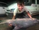 """Bắt được cá trắm đen """"khủng"""" nặng 50kg, dài 1,6m ở Yên Bái"""