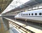 Đường sắt cao tốc Bắc - Nam tốc độ 350 km/h, chuyên gia kinh tế: Tôi không dám đi!