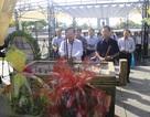 Đoàn công tác Bộ LĐ-TB&XH tri ân các anh hùng, liệt sĩ tại Quảng Trị
