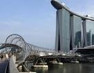 Kinh tế Singapore sụt giảm bất ngờ, xuất khẩu của Trung Quốc cũng giảm mạnh