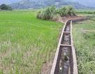 Dự án đô thị nghìn tỷ Tiến Xuân của Sudico: Sau 10 năm vẫn hoành tráng trên... giấy