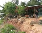 Sạt lở hàng trăm mét bờ sông, 27 hộ dân phải di dời khẩn cấp