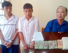 Vận chuyển thuê 3 bánh heroin từ Thanh Hóa ra Hà Nội với giá 30 triệu đồng