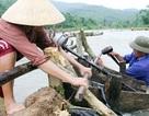 Nghệ An: Khó hoàn thành mục tiêu cấp điện tất cả thôn bản vào năm 2020