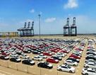 """Nhập khẩu """"ô tô con"""" tăng mạnh, hải quan thu thêm hàng ngàn tỷ đồng"""