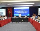 Quá tải điện mặt trời khu vực Ninh Thuận, Bình Thuận: Thiệt hại không chỉ của riêng nhà đầu tư điện mặt trời
