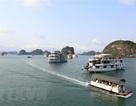 Thuyền viên quay lén du khách tắm tráng, tàu du lịch Hạ Long bị đình chỉ hoạt động