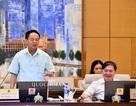 Không hạn chế quyền nhập cảnh của người Việt dù phạm pháp, mất năng lực