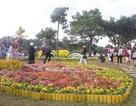 Festival hoa Đà Lạt lần thứ 8 sẽ có nhiều điểm nhấn đặc sắc