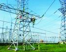 Ngành điện tìm giải pháp giải toả công suất cho các dự án điện mặt trời