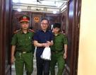 Nguyên Tổng giám đốc Công ty Groupama Việt Nam lãnh 12 năm tù