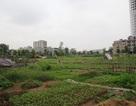Hàng loạt hộ dân bị thu hồi đất kiến nghị được xem xét lại mức giá đền bù