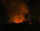 Đà Nẵng: Rừng cháy dữ dội, hàng trăm người dập lửa trong đêm