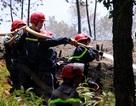 Rừng thông hàng chục năm tuổi bốc cháy dữ dội