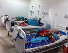 Đà Nẵng chỉ đạo phòng chống sốt xuất huyết
