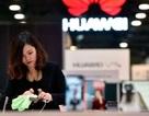 """Huawei bị """"tố"""" bí mật thu thập dữ liệu ở Séc, chia sẻ với Đại sứ quán Trung Quốc"""