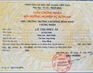 """Chủ tịch tỉnh Bình Định: Làm rõ vụ """"giáo viên bị loại thi tuyển do giấy chứng nhận sư phạm"""""""