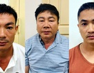 Công an Hà Nội triệt phá đường dây buôn bán hổ xuyên quốc gia