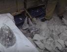 Bắt 55 khúc sừng tê giác giấu trong thạch cao tại sân bay Nội Bài