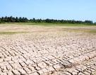 Cảnh báo hạn hán, xâm nhập mặn ở ĐBSCL và Nam Bộ