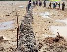 """Đắk Lắk chỉ đạo làm rõ """"lùm xùm"""" quanh công trình thủy điện của vợ PGĐ Sở"""