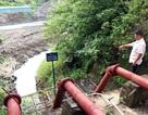 Đắk Nông chỉ đạo xử lý vụ thủy điện nắn dòng, cây trồng chết khát