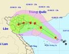 Hôm nay, áp thấp nhiệt đới có khả năng mạnh thành bão với diễn biến phức tạp