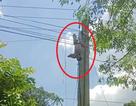 """""""Giải cứu"""" xe tải vướng dây điện, tài xế bị điện giật trọng thương"""