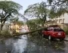 Lốc xoáy khiến hàng chục ngôi nhà ở Lâm Đồng bị tốc mái