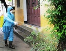 10 ca tử vong do sốt xuất huyết, những dấu hiệu nào đe dọa tính mạng?