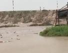 Cà Mau: Thủy triều dâng cao, sóng lớn gây sạt lở nghiêm trọng đê biển