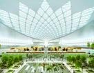 Hoa sen, thác nước là điểm nhấn nổi bật trong sân bay Long Thành