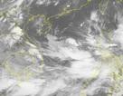 Bão số 3 vừa tan, Biển Đông lại xuất hiện vùng áp thấp