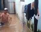 """Dân đảo Phú Quốc quay cuồng với cơn """"đại hồng thủy"""" chưa từng có"""
