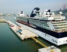 """Du lịch tàu biển: """"Kho báu"""" cần được khai phá tại Hạ Long"""