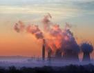 Biến đổi khí hậu toàn cầu phải được dừng lại nếu loài người muốn sống sót