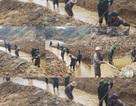 Sông ngòi cạn khô, hàng trăm công nhân đào kênh tìm nước