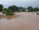 700 nhà dân bị ngập lụt do mưa lớn kéo dài