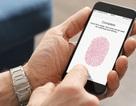 """Apple """"chậm chân"""" đến nỗi đến năm 2021 iPhone mới có cảm biến vân tay dưới màn hình"""