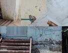 Hà Nội: Nhà tái định cư xuống cấp, hàng trăm căn bỏ trống