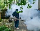"""Hà Nội kích hoạt các """"đội đặc nhiệm"""" chống dịch sốt xuất huyết"""