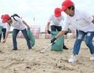 """Hơn 800 tình nguyện viên cùng """"Giải cứu đại dương"""" ở Đà Nẵng"""