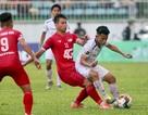 Vòng 22 V-League: HA Gia Lai gồng mình cho cuộc chiến trụ hạng