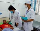 Hơn 2.600 ca mắc bệnh sốt xuất huyết