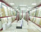 Vật liệu xây dựng Chân Linh chuẩn bị khởi công thêm showroom thứ 3